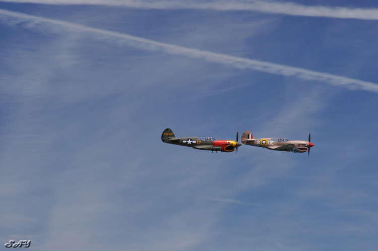 Name:  P-40s 18.jpg