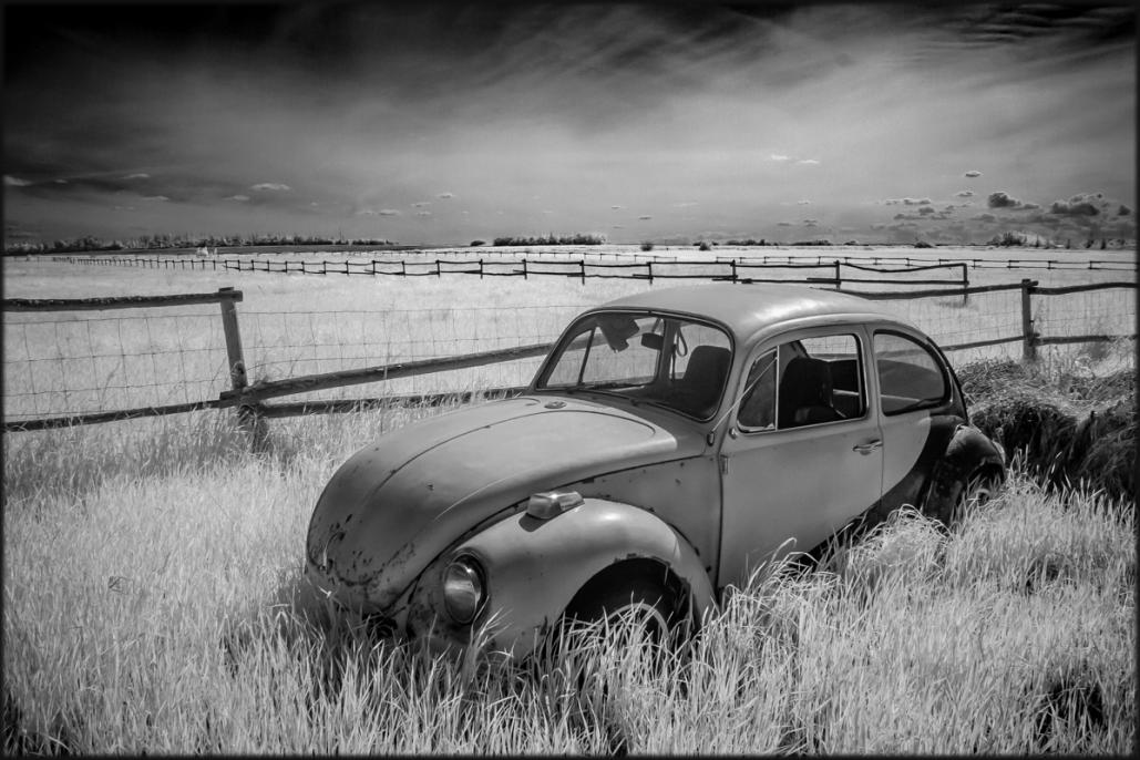Name:  VW Field IR 01-2963b.jpg