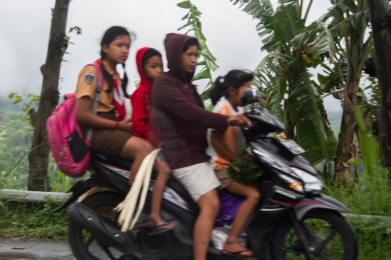 Name:  moped-1.jpg
