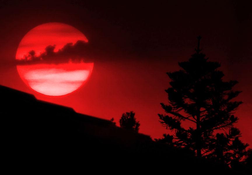 Name:  suncrop.jpg Views: 31 Size:  40.0 KB