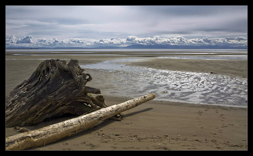 Driftwood and clouds by Michaelaw
