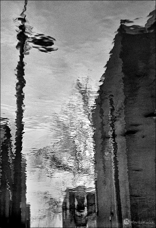 Puddle Reflection by Marko Kulik
