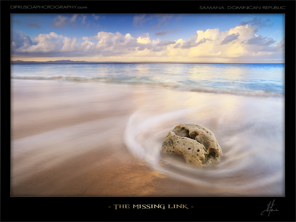 The Missing Link by Patrick Di Fruscia