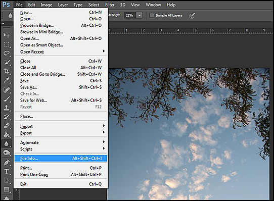 How to find exposure or exif data in Photoshop
