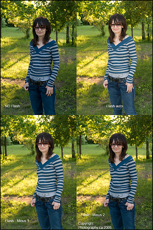 Light photography using backlighting and flash outdoors aloadofball Choice Image